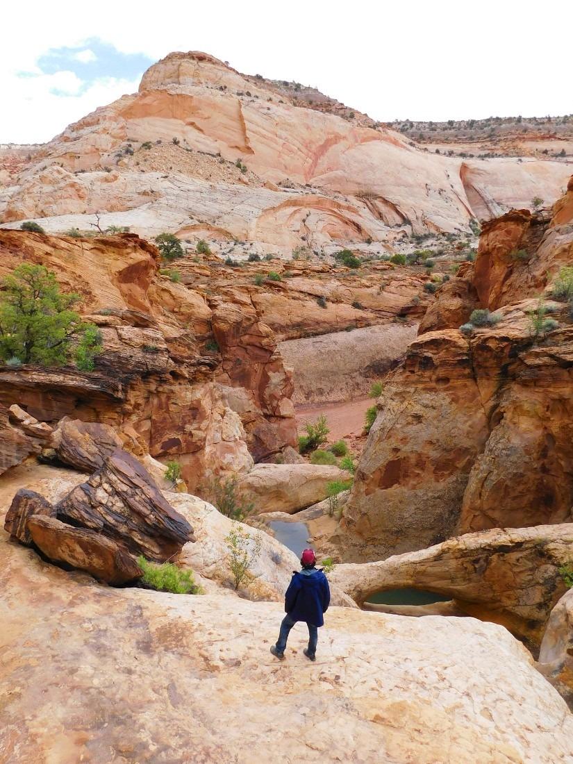Hiking in Capitol Reef National Park in Utah