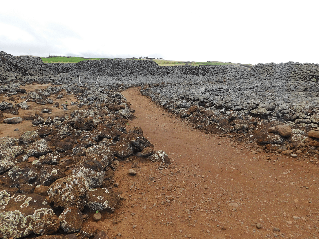 Mo'okini Heiau on the Big Island should be part of your Big Island 7 Day Itinerary