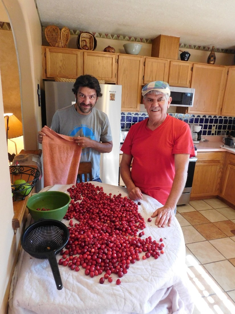 All the cherries we picked in New Mexico