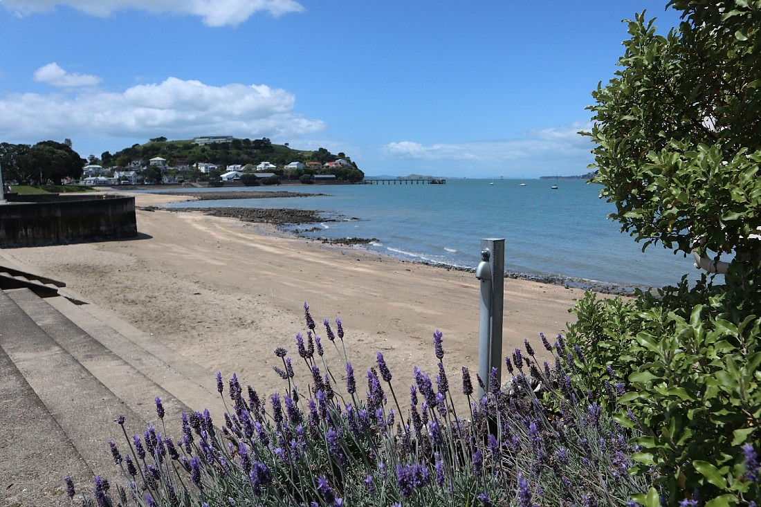 Devonport Beach in Auckland