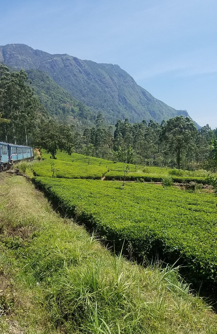 Train journey from Kandy to Ella