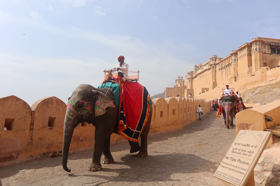 Elephant riding at Amer Fort - one of the best known historical places in Rajasthan