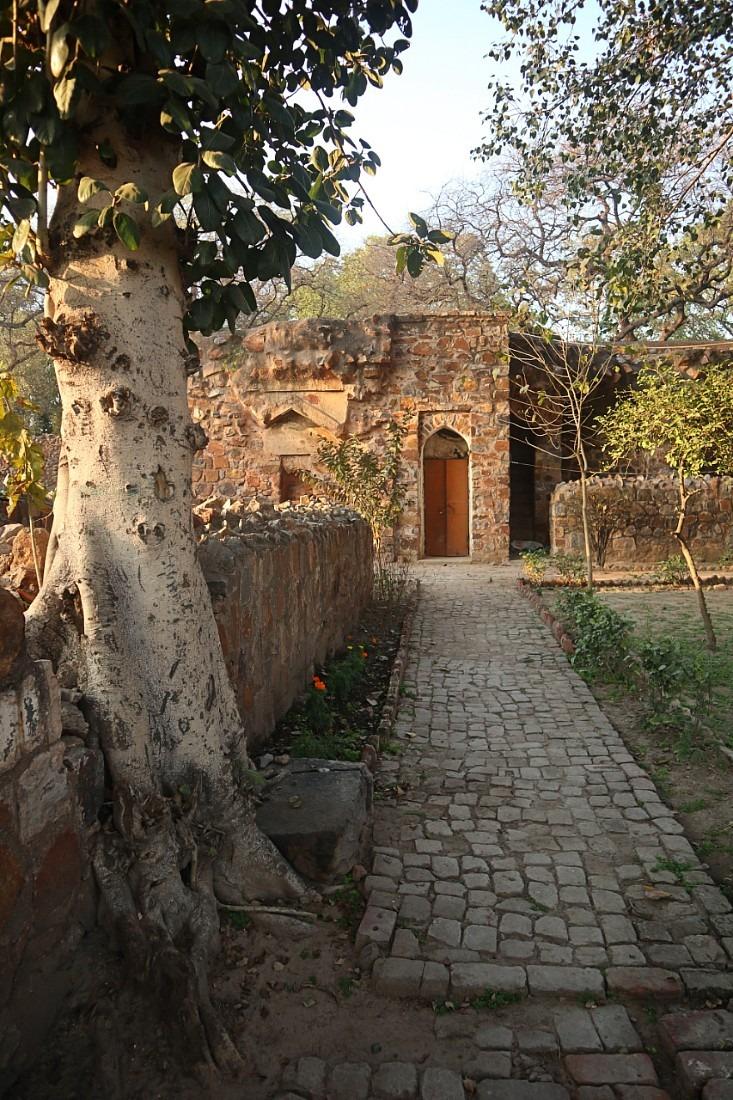 Ruin at Feroz Shah Kotla in Delhi