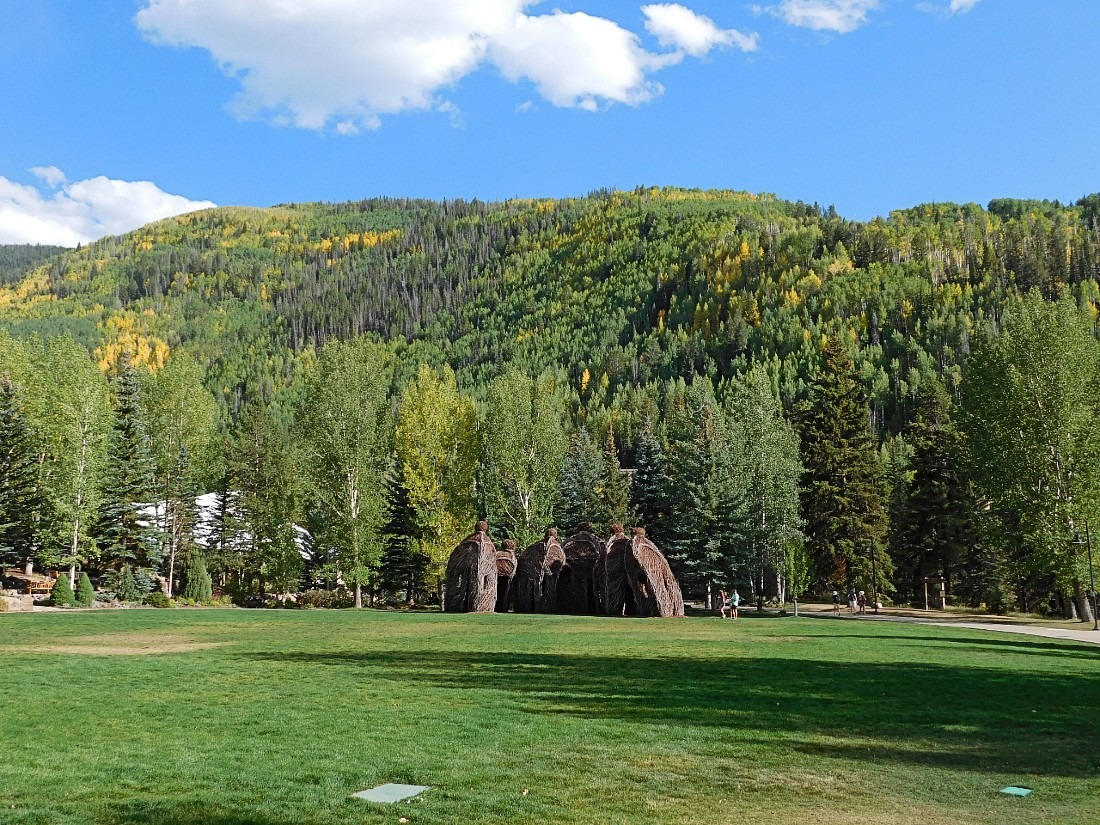 Betty Ford Alpine Garden in Vail, Colorado