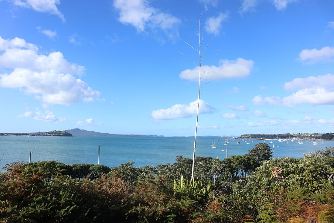 Auckland Harbor views