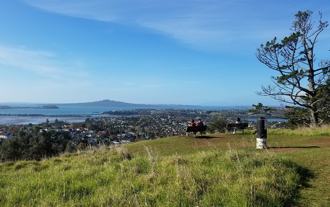 View from Mount Hobson in Auckland