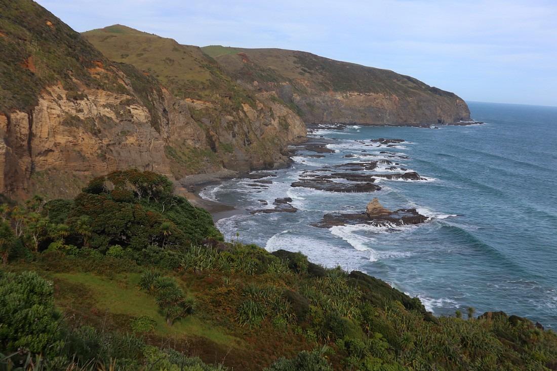 View from Te Henga Walkway in Auckland