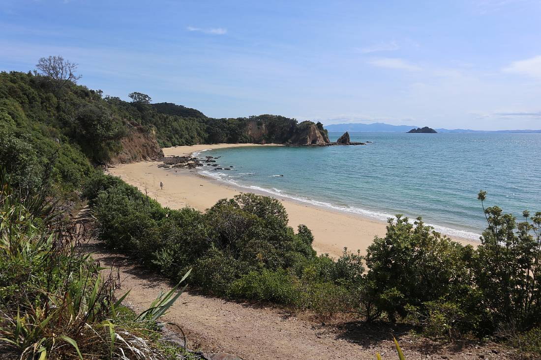 Beach on Rotoroa Island, one of the best Auckland day trips