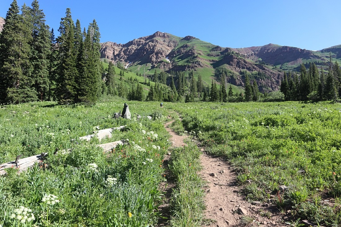 Hiking in Crested Butte, Colorado
