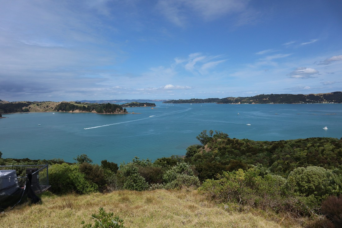 Views on Rotoroa Island, one of the best Auckland day trips