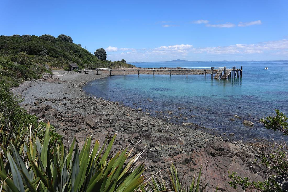 Wharf at Tiritiri Matangi Island, one of the fun places to go in Auckland