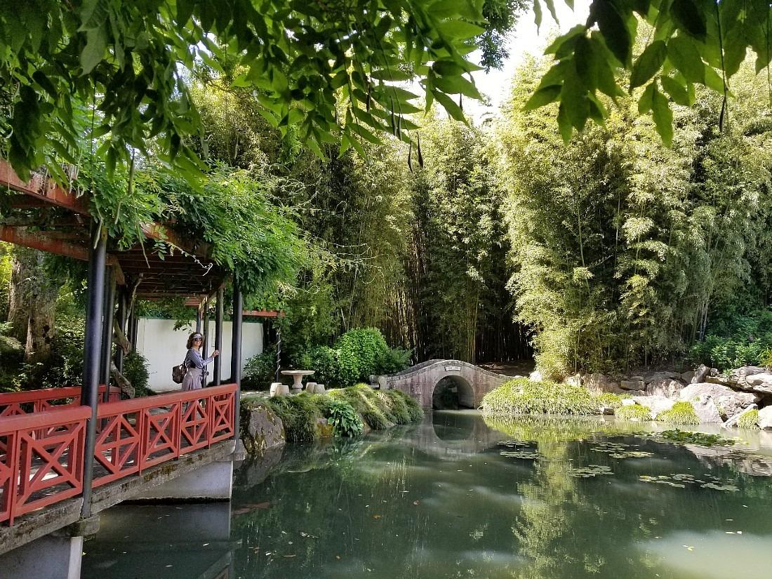 Chinese Garden at Hamilton Gardens
