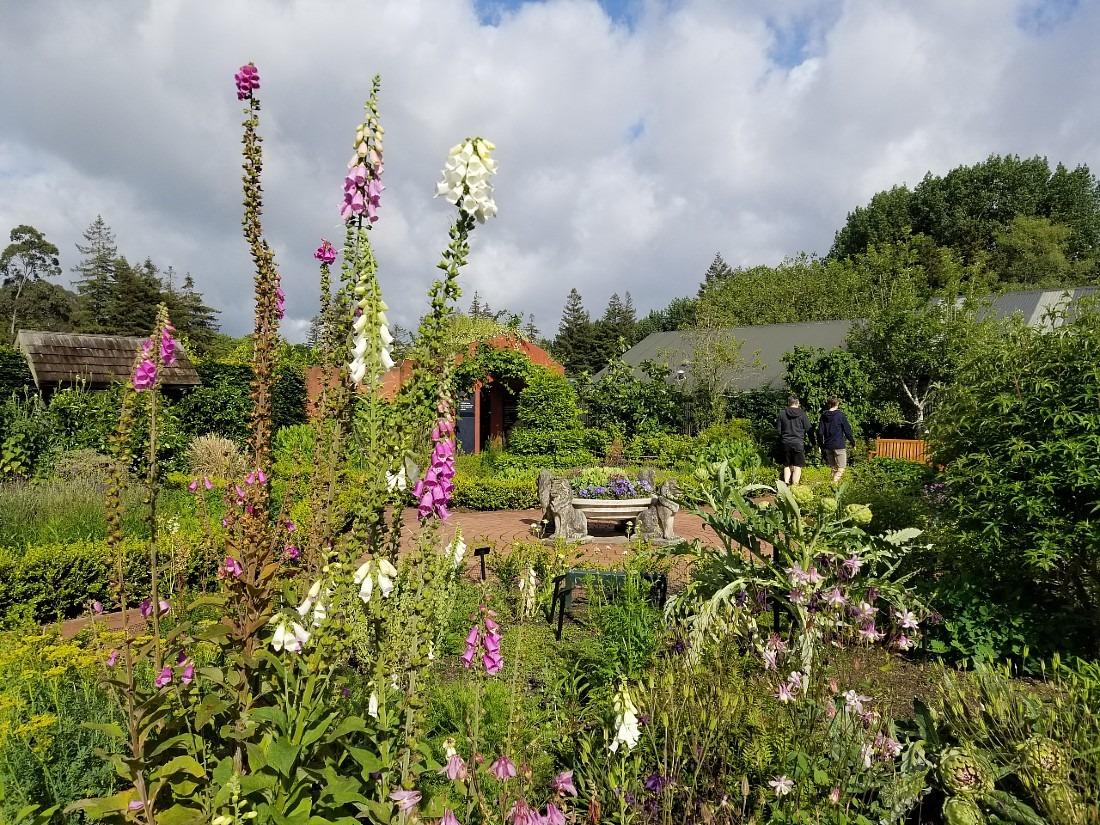English Flower Garden at Hamilton Gardens