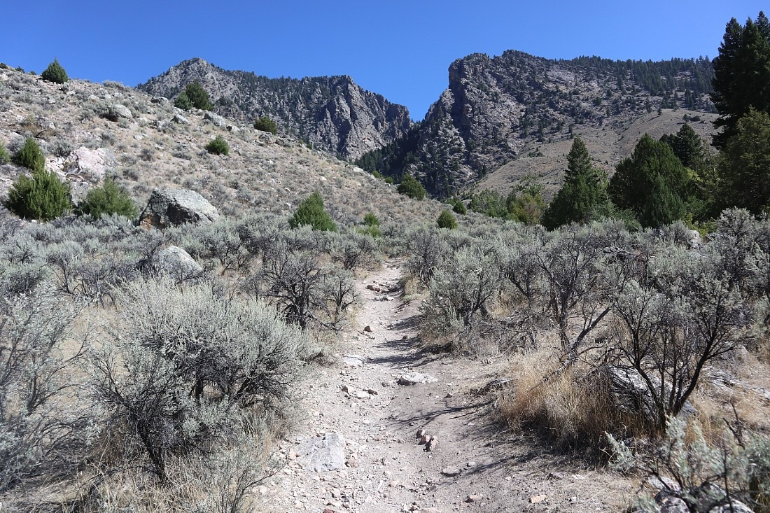 Trail to Goldbug Hot Springs in Idaho
