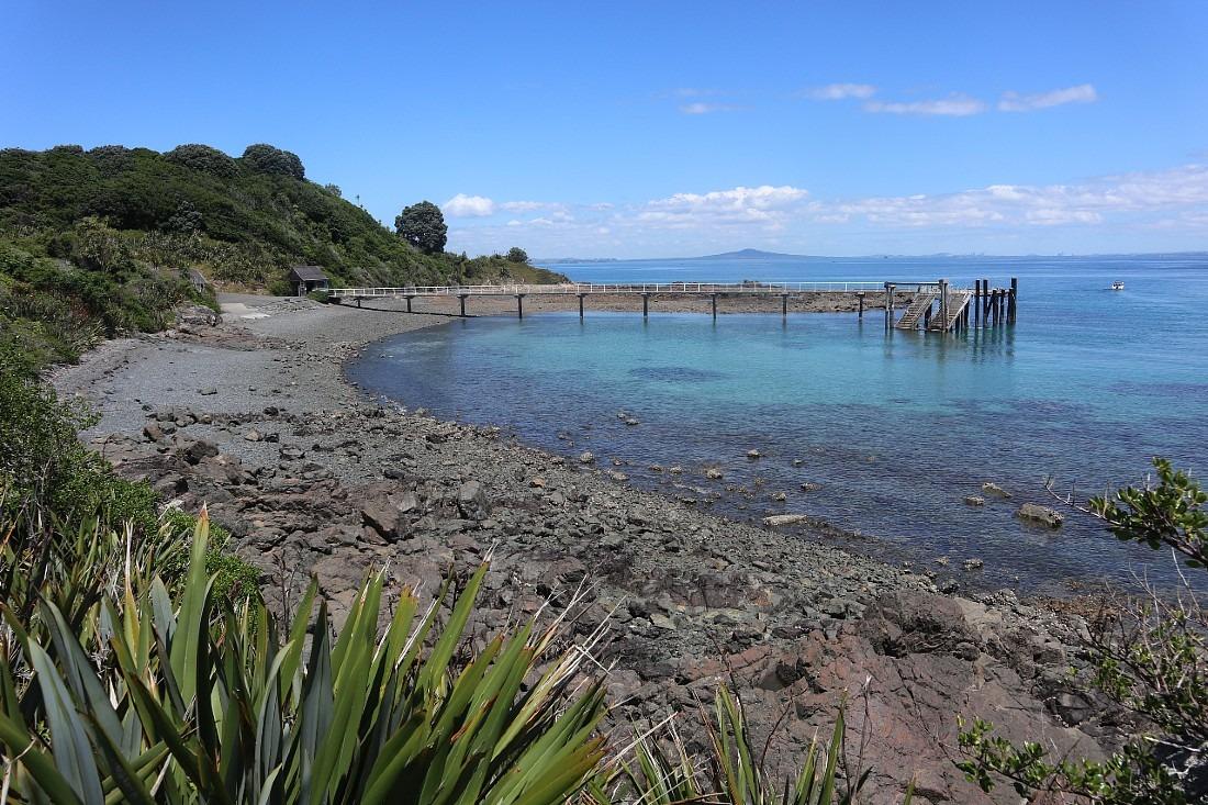 Jetty at Tiritiri Matangi Island in Auckland