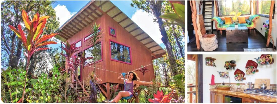 Adventure Hawaii Tree house