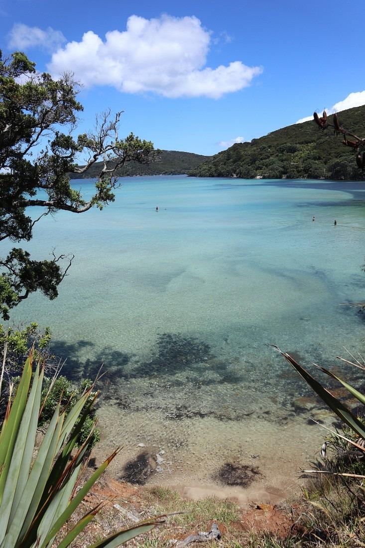 Ocean views on Great Barrier Island