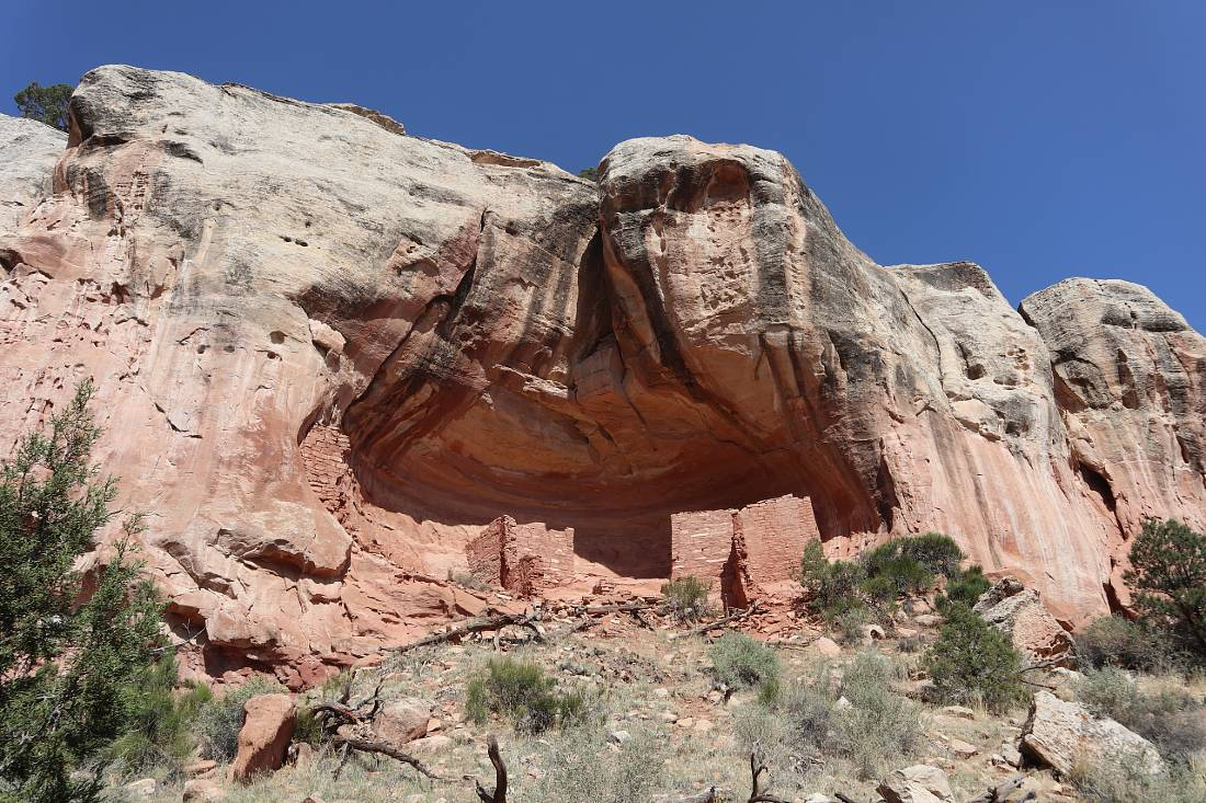 Cliff dwelling at Canyon of the Ancients - one of the best hidden gems of Colorado