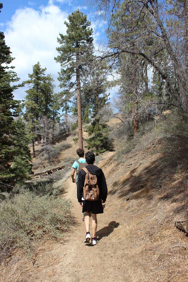 Hiking in Big Bear in the summer