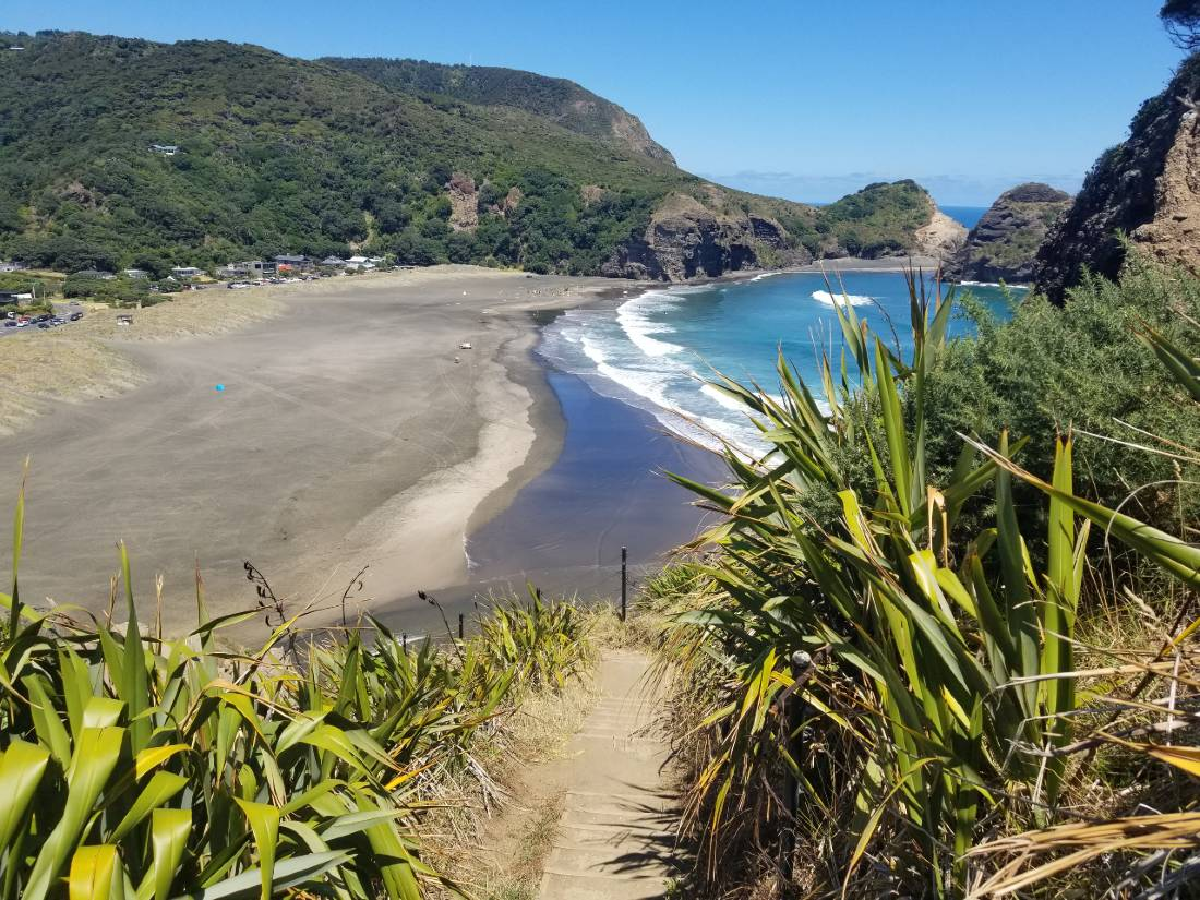 Piha Beach from Lion Rock