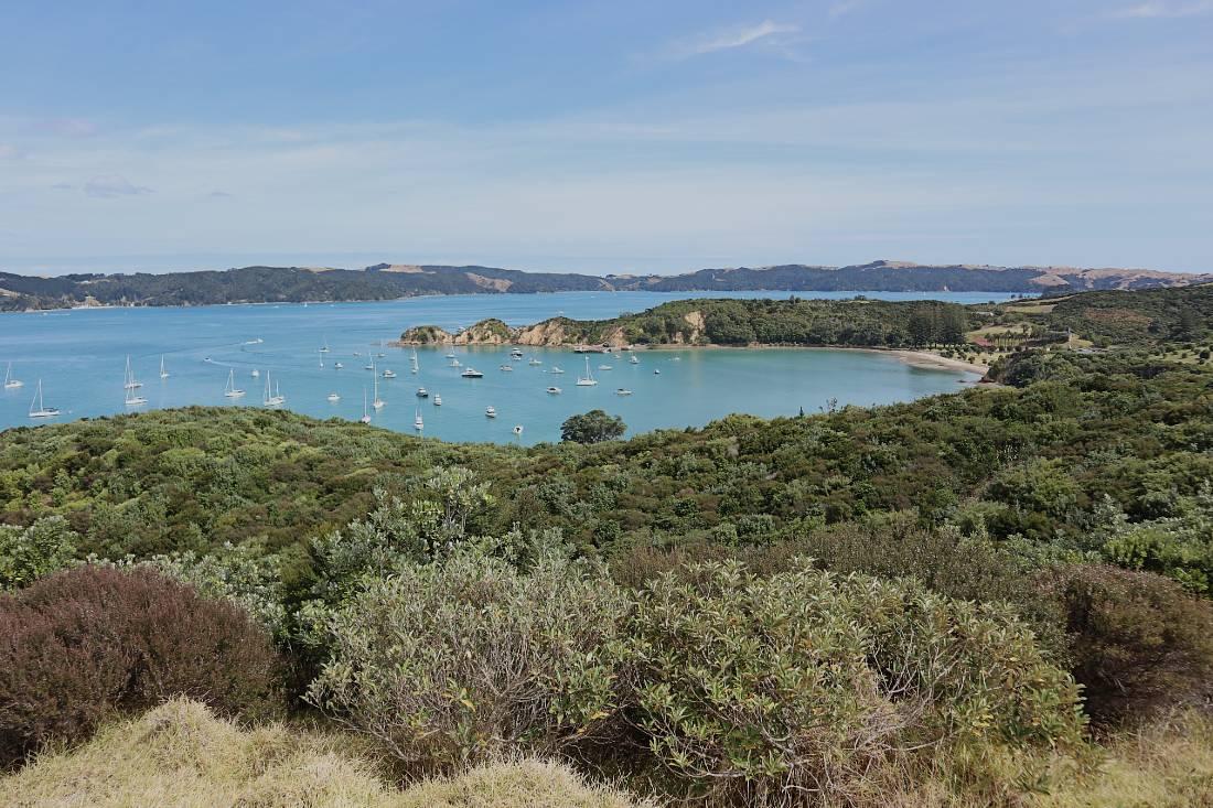Viewpoint on Rotoroa Island