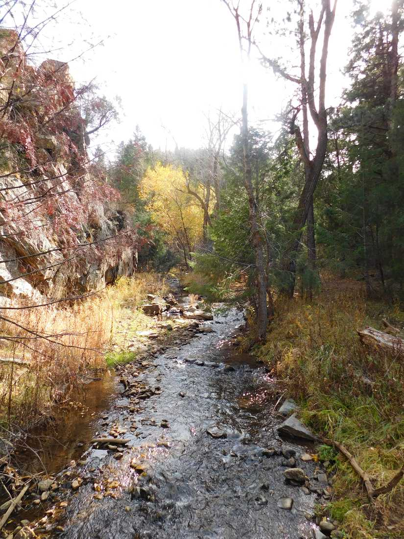 Chavez and Beaver Brook trail is one of the best hikes in Golden