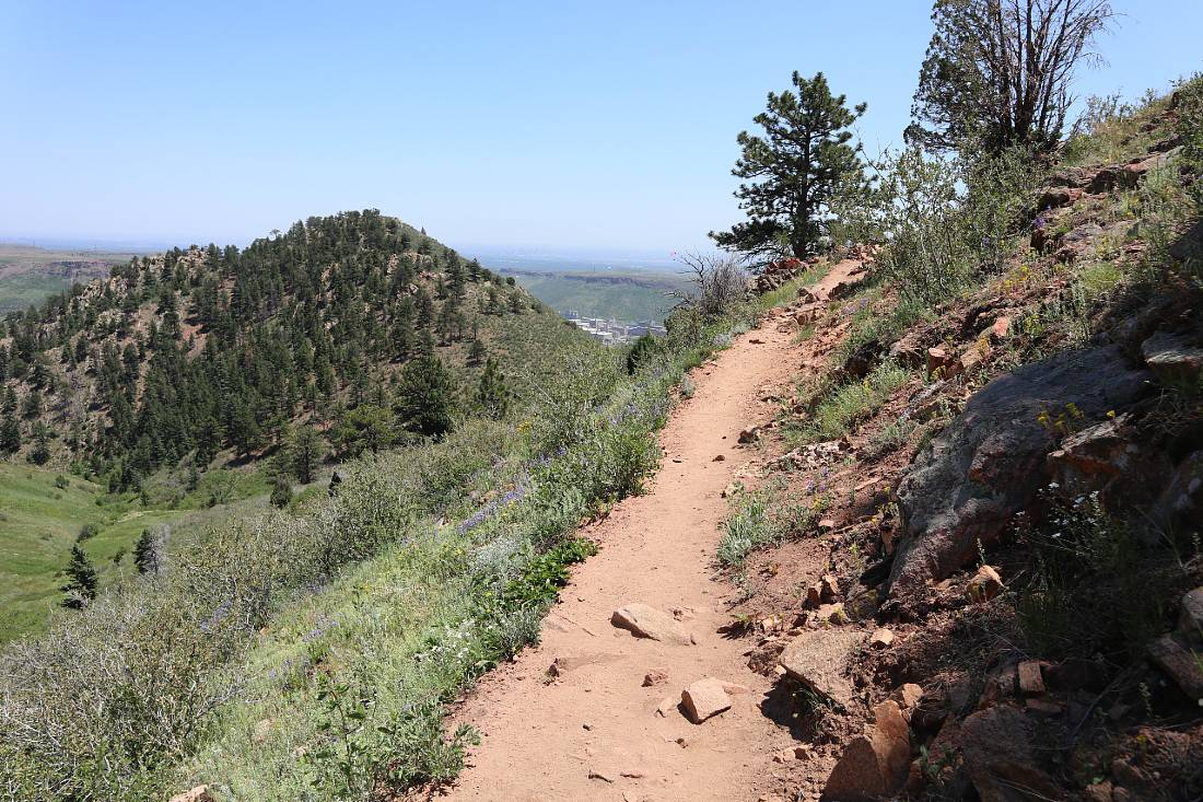 Mount Galbraith loop trail - one of the best Golden Hikes