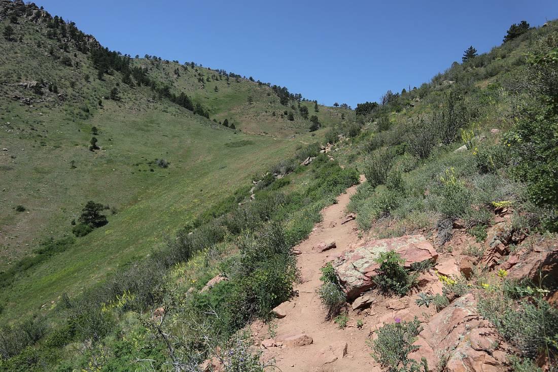 Nightbird Gulch trail in Golden