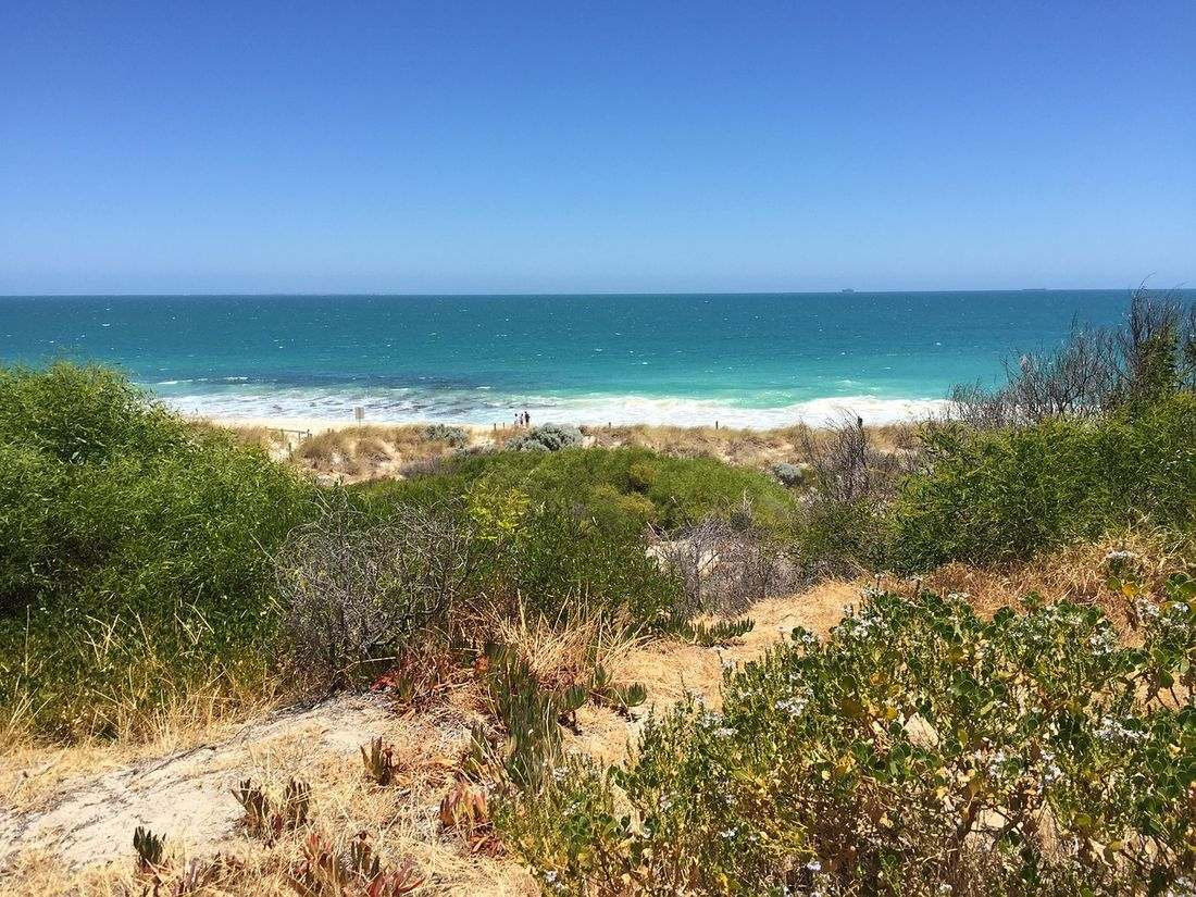 Cottesloe Beach Seascapes Australia
