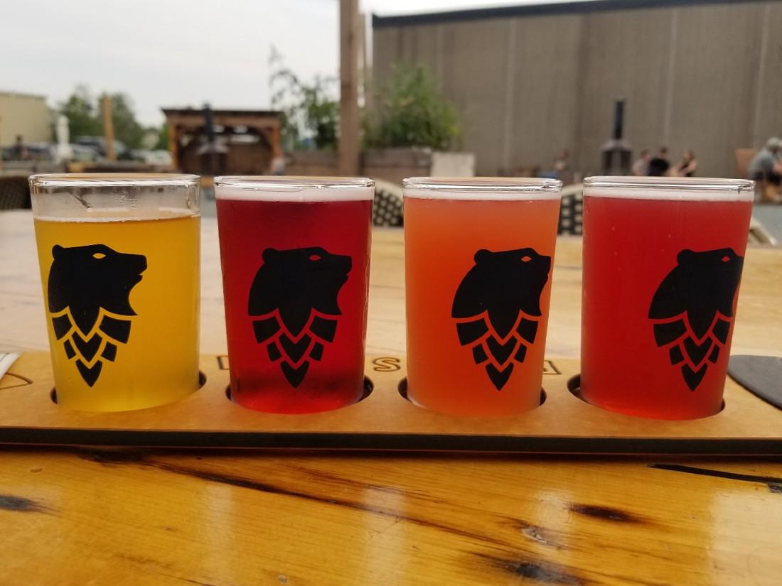 Ursa Minor Beer in Duluth